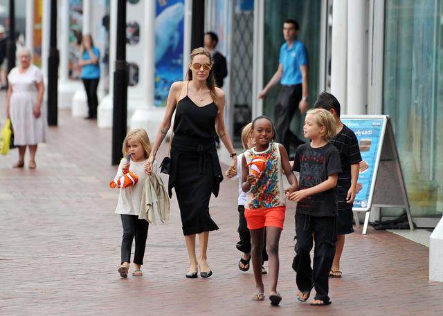 Shiloh Jolie Pitt, Knox Leon Jolie Pitt, Zahara Jolie Pitt, Pax Thien Jolie Pitt, Vivienne Marcheline, Angelina Jolie