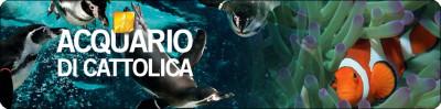 acquario2